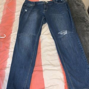 Cato's contemporary jeans